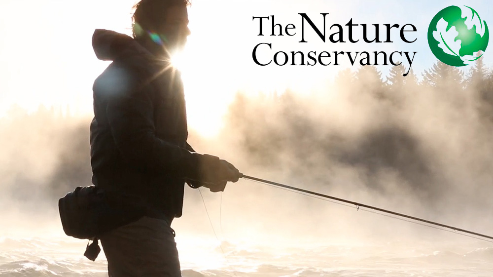 Nature Magazine Logo Nature Conservancy Magazine